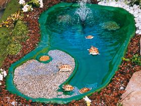 Laghetti tartarughe realizzati in materiale antisdrucciolo for Vasca pesci esterno