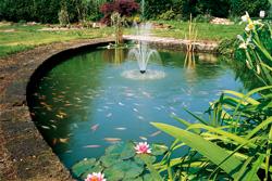 Acqua laghetti tartarughe giardini laghetto resina telo for Laghetto vetroresina