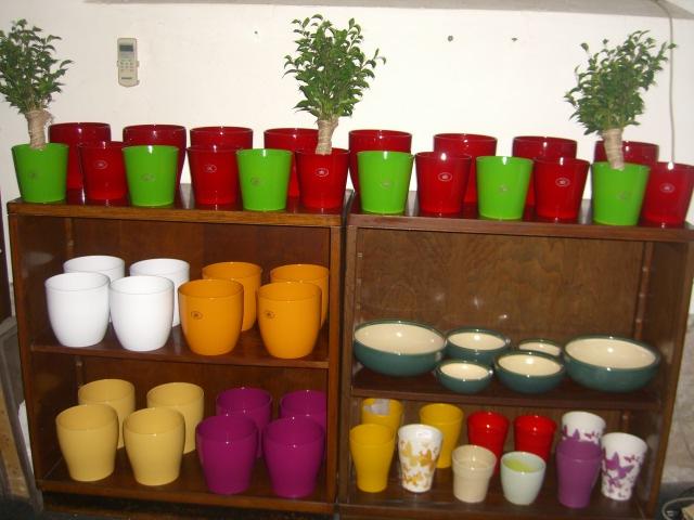 Decori oggettistica idee regalo confezioni vivaio roma - Coprivasi da interno ...