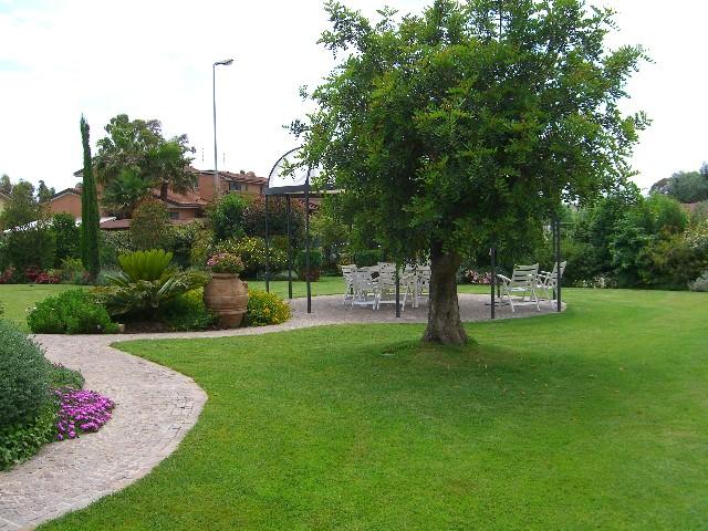 Alberi da giardino sempreverdi sei regole per un albero - Alberi da giardino sempreverdi da ombra ...