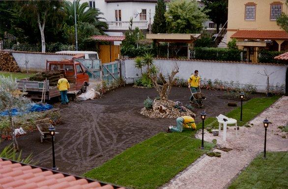 Prato rotoli tappeto erboso semi sementi rotoli for Prato erboso a rotoli