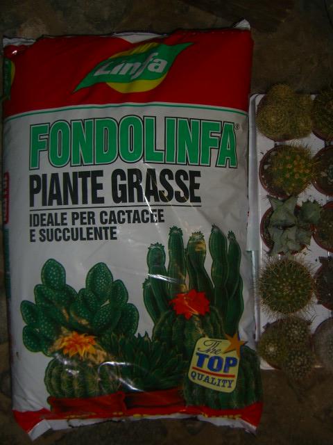 terriccio corteccia ammendanti terrici specifici per piante grasse