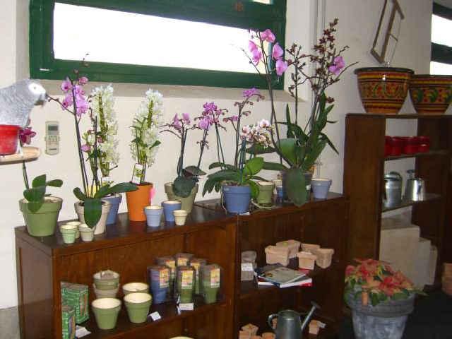 home di vasi fioriere e vasi in resina fioriere vasi da giardino vasi ...